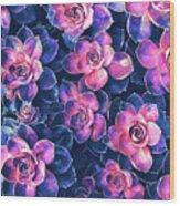 Colorful Succulent Plants Wood Print