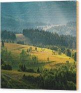 Colorful Summer Landscape In The Carpathian Mountains. Ukraine,  Wood Print