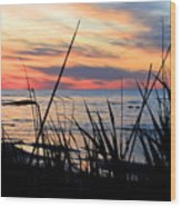 Colorful Sunset On Lake Huron Wood Print by Danielle Allard