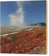 Colorful Thermal Area  Wood Print