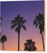 Colorful Tropical Palm Tree Sunset Wood Print