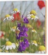 Colorful Wild Flowers Nature Scene Wood Print