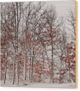 Colorful Winters Day Wood Print