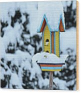 Colorful Wooden Birdhouse In The Snow Wood Print