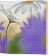 Colorfull Spring Wood Print