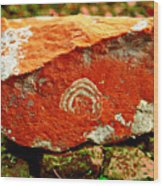 Colors At River Bed Moina Tasmania Wood Print