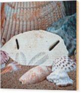 Colors From Sanibel Island Wood Print