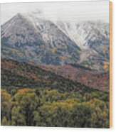 Colors Of Autumn On Mcclure Pass Wood Print