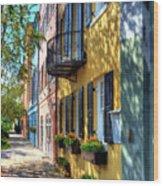 Colors Of Charleston 5 Wood Print by Mel Steinhauer