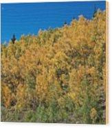 Colors Of Colorado  Wood Print
