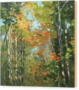 Colors Of Early Fall  Wood Print