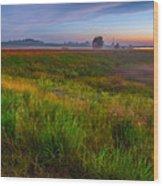 Colors Of Iowa  Wood Print