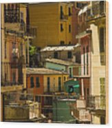 Colors Of Manarola Italy Wood Print