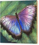 Colors Of Nature - Hunawihr Morpho Wood Print