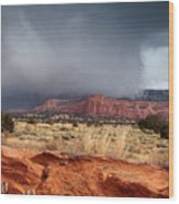 Colors Of New Mexico Wood Print