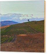 Colors Of Sicily Wood Print