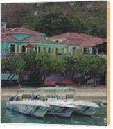 Colors Of St. John Us Virgin Islands Wood Print