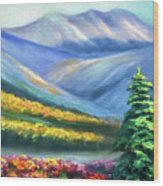 Colors Of The Mountains 2 Wood Print