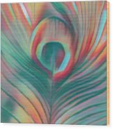 Colors Of The Rainbow Peacock Feather Wood Print