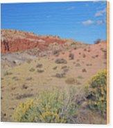 Colors Of The Utah Desert Wood Print