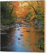 Colors On A Stream Wood Print
