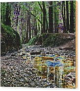 Colors On The Creek Wood Print