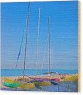 Colors On The Shore Wood Print
