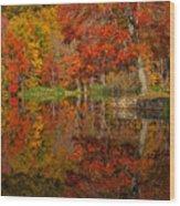 Colors Reflect Wood Print