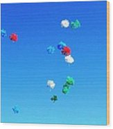 Colorz Flying High Wood Print