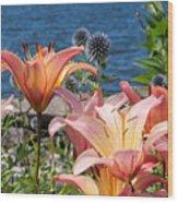 Colour At The Lake Wood Print