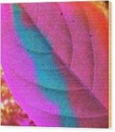 Colour Leaf Wood Print