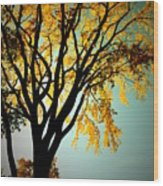 Colour Of The Fall Wood Print