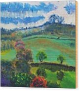 Colourful English Devon Landscape - Early Evening In The Valley Wood Print