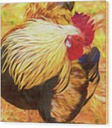 Colourful Hen Wood Print