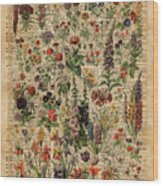 Colourful Meadow Flowers Over Vintage Dictionary Book Page  Wood Print