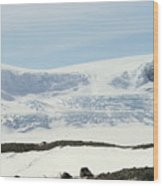 Columbia Icefields Wood Print