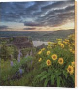 Columbia River Gorge Sunrise Wood Print