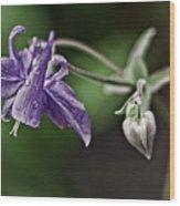 Columbine And Heart Wood Print