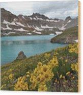 Columbine Lake And Alpine Sunflower Landscape Wood Print