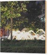 Columbus Circle 6586 Wood Print