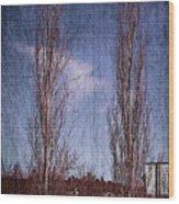 Column Aspen 2 Wood Print