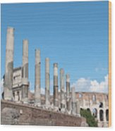 Columns Colosseum And Lamppost Wood Print