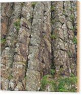Columns Of Giants Wood Print