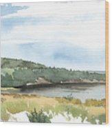 Colyer Lake Wood Print