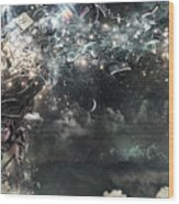 Coma Wood Print
