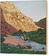 Comanche Gold Wood Print