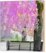 Come Sit By The Cherry Blossoms Wood Print