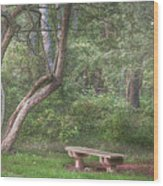 Come Sit With Me Awhile Wood Print