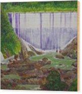 Comerio Dam Wood Print