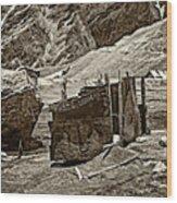 Comfort Station Sepia Wood Print